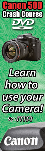 Canon 50D Crash Course