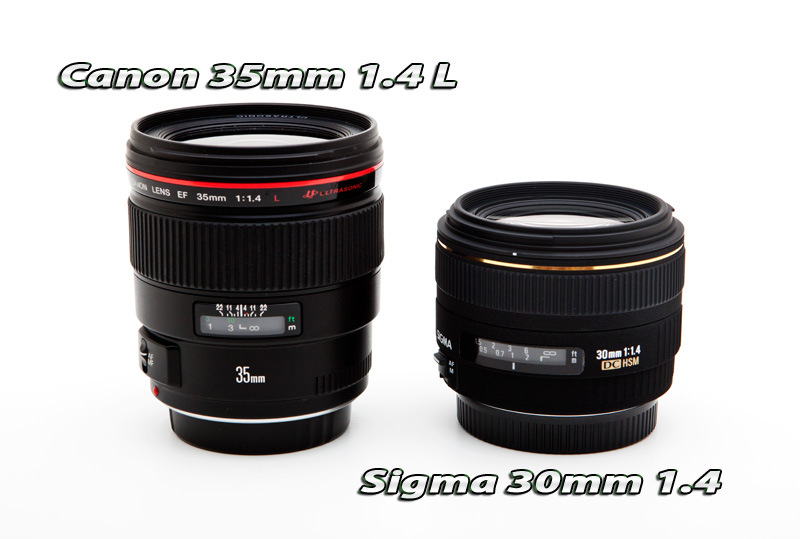 Best Portrait Lenses For Aps C 1 6 Crop Canon Body